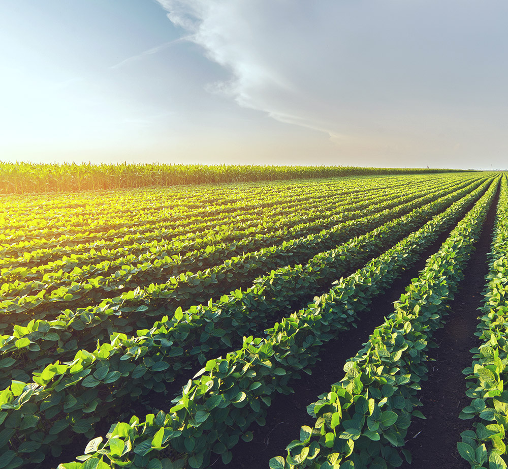 Agriculture Solutions - Product offering